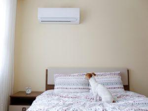 ペットのための冷房対策 その③