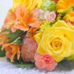 ペット供養での花の選び方は?おすすめ花を紹介!
